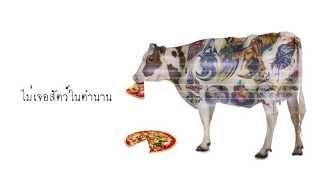 ฉันเจอวัวป่าโคโรโวเก้ - ไปส่งกู บขส. ดู๊