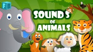 Sounds of Animals Song | Children Nursery Rhymes