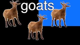 Goats - Neave TV