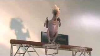 Oscar The Featherless Bird - Ugly or Cute?