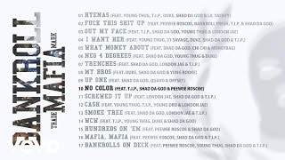 Bankroll Mafia - No Color (Audio)