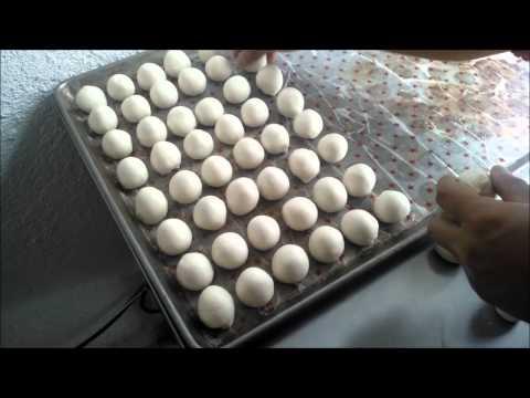 Video Máquinas Para Tortilla de Harina