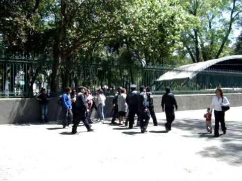 Policia golpeado
