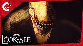 """LOOK-SEE: Part 4 