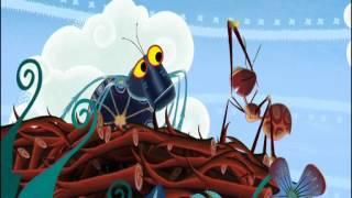 Tinga Tinga Tales_Why Ants work together