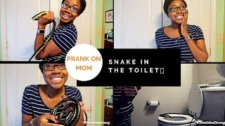 SNAKE IN THE TOILET !| PRANK ON MY MOM
