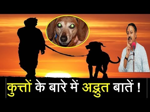 Xxx Mp4 Rajiv Dixit Amazing Facts About Dogs Very Informative Video 3gp Sex