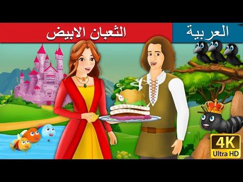 Xxx Mp4 الثعبان الابيض The White Snake Story In Arabic حكايات اطفال Arabian Fairy Tales 3gp Sex