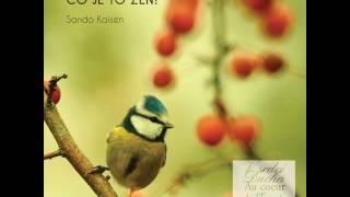 Mistr Kaisen: Co je to Zen?