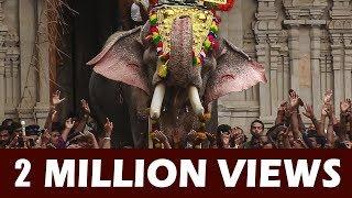 Thechikottukavu Ramachandran Mass Entry at Thrissur Pooram - 4K Video