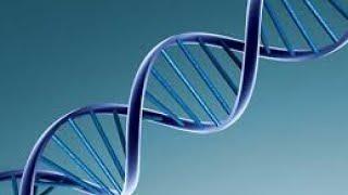 فحوصات الحمض النووي على الإنترنت.. أين تذهب بيانات الزبائن؟