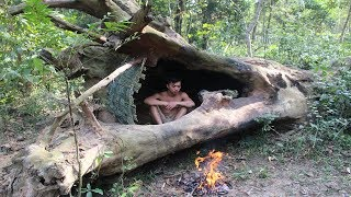 Primitive Technology: House in the trunk