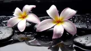 Buddha Peace Soul Massage  con flores y paisajes.