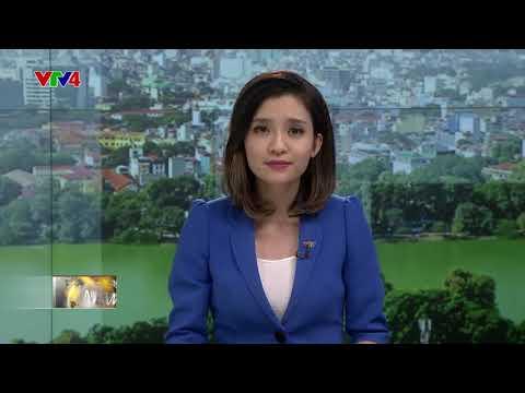 VTV News 15h - 28/08/2017