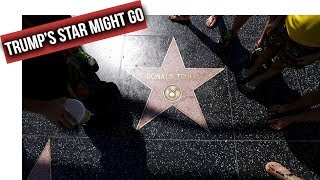 Trump's star voted off Hollywood Walk of Fame by City Council