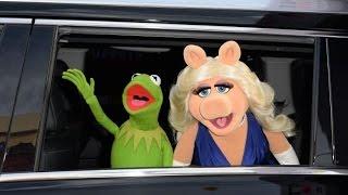 MUPPET SHOW - Es ist aus zwischen Miss Piggy und Kermit