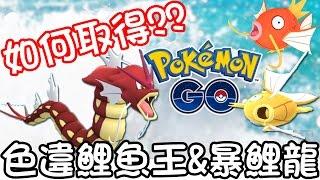 【Pokémon Go】如何取得色違鯉魚王&暴鯉龍??潑水節活動開跑!!!