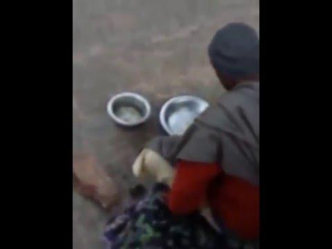 Xxx Mp4 जंगल में मंगल आदमी कुत्ता और बंदर का खाना पीना Gahvar Kund Barsana 3gp Sex