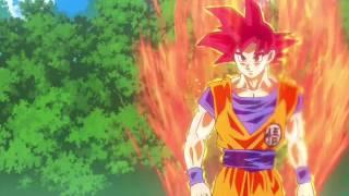 Doble Cero Flow Hero-Dbz La batalla de los dioses