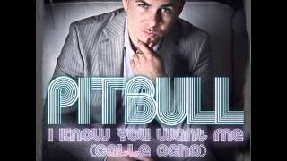 Pitbull - I Know You Want Me (Ringtone)