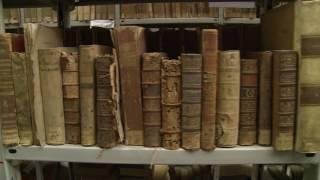 Riapre la Biblioteca comunale di Palermo, un gioiello restituito alla città