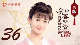 知否知否应是绿肥红瘦【TV版】36(赵丽颖、冯绍峰、朱一龙 领衔主演)
