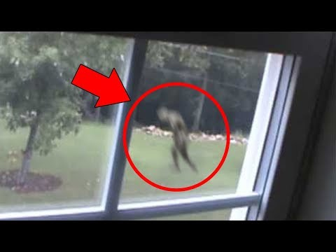5 Mysterious Creatures Caught on Tape Top 5 STRANGE Creatures