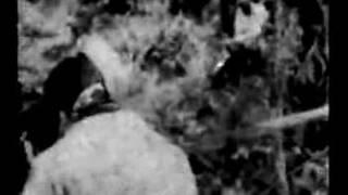 Rape of Nanking  Part I Atrocities in Asia Nanjing Massacre