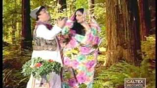 Shahnaz Tehrani & Hojati  - Amou Sabzi Foroosh | حجتی و شهناز تهرانی