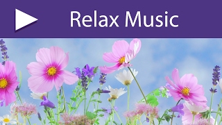 No Stress Calming Music | 3 HOURS Relaxing Meditation Music to Get Rid of Anxiety