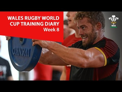WEEK 8: Wales Rugby World Cup training diary   WRU TV