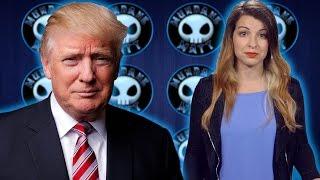 Did Anita break the law by criticizing Donald Trump?