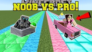 Minecraft: NOOB VS PRO!!! - FAN MADE MARIO KART RACE - Mini-Game