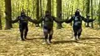 Kingkong Dance.mp4
