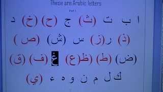 qari selim's arabic 1