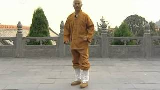 少林Shaolin Basic Kicks and footwork