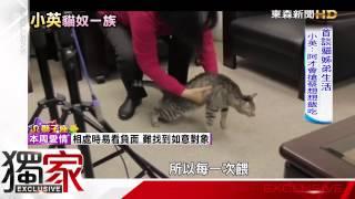 「不愛洗澡小男生」 蔡英文拿手機談貓兒子 -東森新聞HD