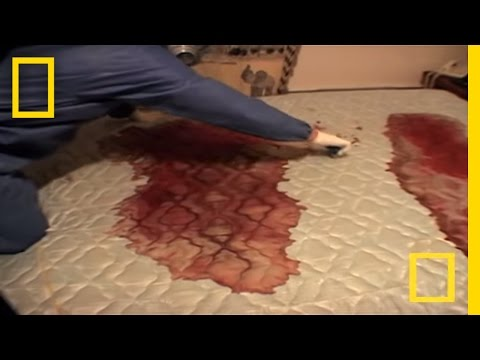 Crime Scene Cleaners Real Life CSI