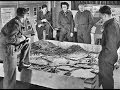 School for Danger: SOE & French Resistance Fight the German Occupation - Restored 1945
