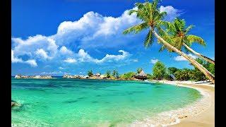 Goa Beach in 4k (INDIA)