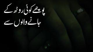 Pooche Koi To Rooth Ke Jaane Walon Se | Urdu Poetry