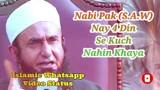 Nabi Pak Nay 4 Din Se Kuch Nahi Khaya ❤️ Maulana Tariq Jameel Bayan ❤️ Islamic Whatsapp Status Video
