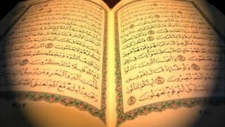 سورة الطلاق / صلاح البدير