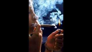 Spodoba - Narkomanska Posla
