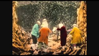 The Extraordinary Journey / Le Voyage extraordinaire (2010) - Trailer