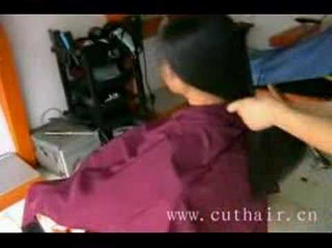 xiaoshu cuthair 51
