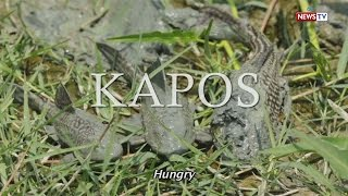Front Row: Kapos (Full Episode with subtitles)