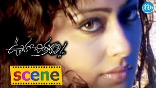 Kaveri Jha and Vamsi Krishna Romantic Song - Ooha Chitram Movie || Romance Of The Day