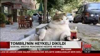 Tombili Heykeli Açılışı - CnnTürk