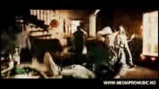 pitbull dj songs 2013